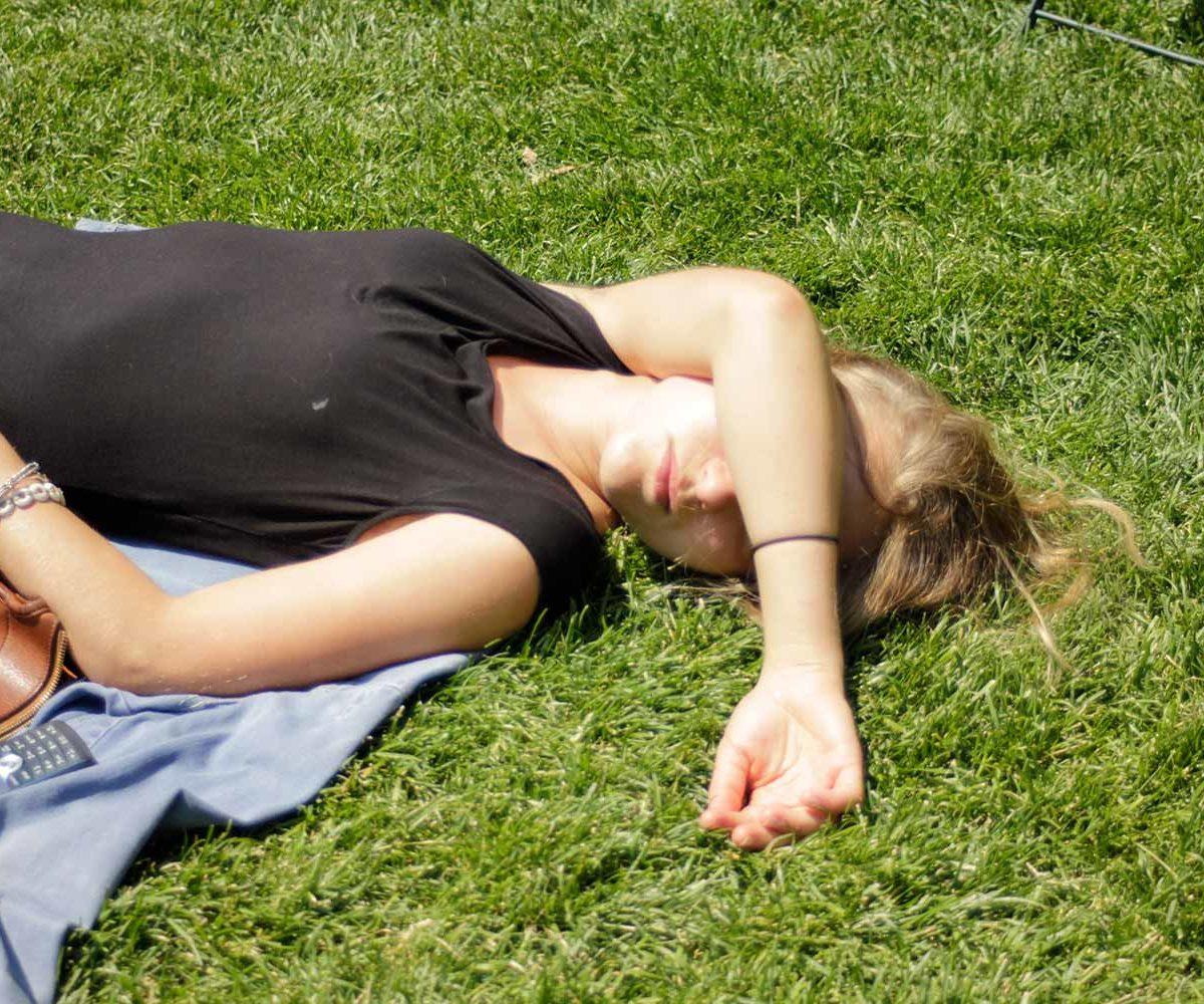 Koios Sleeping